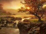 imagini frumoase natura (175)