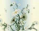 imagini frumoase natura (192)
