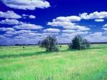 Oboi_s_prekrasnymi_ugolkami_prirody_314_234