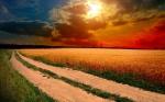 Oboi_s_prekrasnymi_ugolkami_prirody_314_246