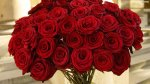 red_roses_wallpaper_7514f