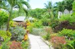stunning-landscaped-garden-st-james-barbados+1152_12951996598-tpfil02aw-5643